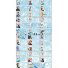 Frozen 3013